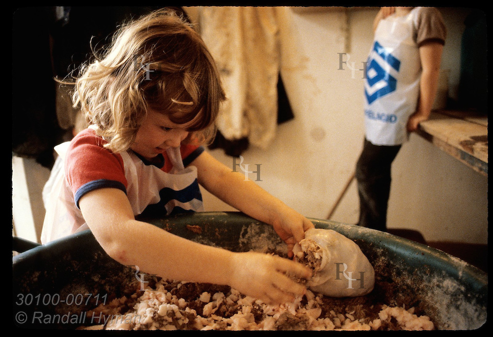 Girl puts lamb fat & blood into bag of intestinal skin,a national delicacy called 'slatur'; Myvatn Iceland
