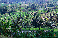 Murni's Bali Tours 2