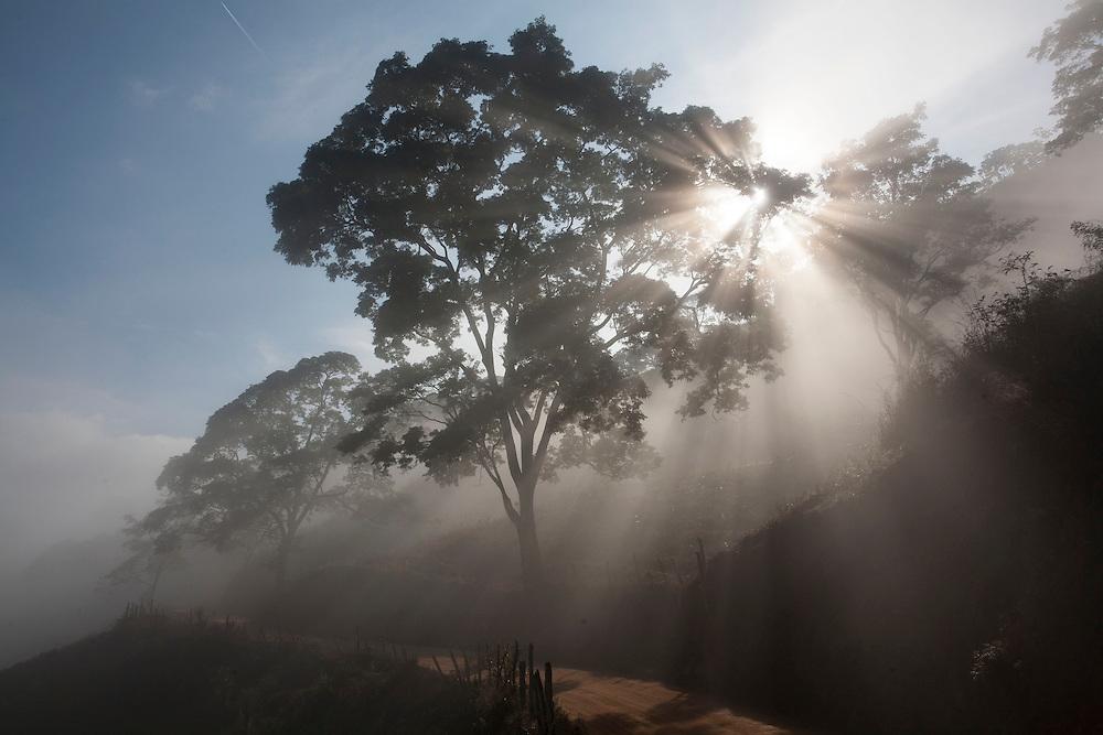 Piranga_MG, Brazil.<br /> <br /> Estrada de terra em Piranga, Minas Gerais.<br /> <br /> The dirt road in Piranga, Minas Gerais.<br /> <br /> Foto: LEO DRUMOND / NITRO