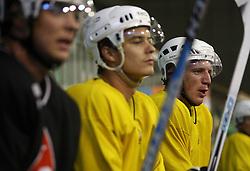 Ziga Pavlin (left) and Bostjan Groznik at second ice hockey practice of HDD Tilia Olimpija on ice in the new season 2008/2009, on August 19, 2008 in Hala Tivoli, Ljubljana, Slovenia. (Photo by Vid Ponikvar / Sportal Images)