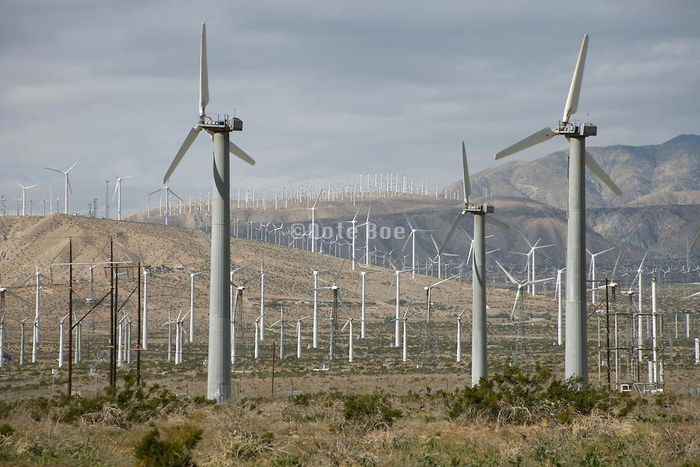 field of wind turbines California USA