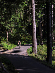 Man riding racing bicycle on cycling tour in the Black Forest, Germany