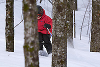 A 7 year old boy skiing fresh powder in the trees at Smuggler's Notch, Vermont.
