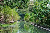 Amphawa Bangkok backwaters Bangkok Thailand
