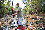 Scott Schexnaydre makes his way through Porter's River, a backwater outlet off the West Pearl River in St. Tammany Parish Louisiana caused by a discharge from the Temple-Inland paper mill in Bogalusa  of  black liquor, a byproduct of the paper making process, turning the river black  killing fish, shellfish and turtles along 40 miles of the river. The chemicals released into the river depleted oxygen levels which caused the fish kill in the river and its' many tributaries. Clean-up crews were dispatched on the Aug. 18th to remove the dead fish before they sink depleting the waterway of more oxygen causing an even larger environmental disaster.