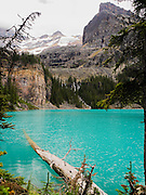 Beautiful, remote Lake O'Hara in Yoho National Park, near Field, British Columbia, Canada; Seven Veils Falls can be seen flowing through the trees and Yukness Mountain on the right