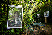 """""""The Trees Will Outlive Us In Situ"""" installation of archival inkjet prints at the Jardin Botanique in Marnay-sur-Seine, France"""