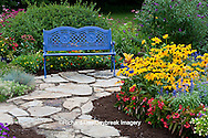 63821-21706 Blue bench and stone path in flower garden.  Black-eyed Susans (Rudbeckia hirta) Red Dragon Wing Begonias (Begonia x hybrida) Homestead Purple Verbena,  Butterfly Bushes, Sedum, zinnias, Marion Co., IL