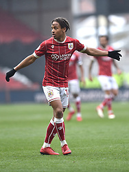 Bristol City's Bobby Reid