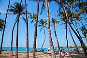 Anaehoomalu Bay, Kohala Coast, Island of Hawaii