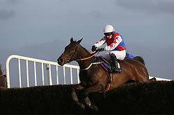 Youcantcallherthat ridden by Denis Hogan clears the last on the way to winning the John & Chich Fowler Memorial EBF Mares Steeplechase during The Easter Tuesday Meeting at Fairyhouse, Ratoath.