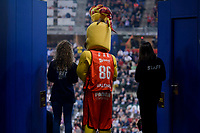 Baskonia's mascot PAM during Semi Finals match of 2017 King's Cup at Fernando Buesa Arena in Vitoria, Spain. February 18, 2017. (ALTERPHOTOS/BorjaB.Hojas)