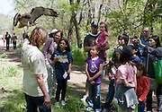 Visitors gather around Kathy Copus of the Blackland Prairie Raptor Center and her red-tailed hawk during EarthFest 2013 at the Connemara Meadow Preserve in Allen on Saturday, April 6, 2013. (Cooper Neill/The Dallas Morning News)