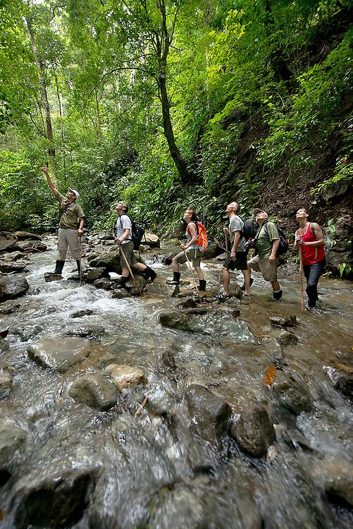 Eco tourists hike along a rain forest trail on the Osa Penisula, Costa Rica