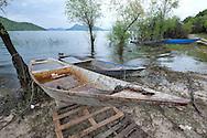 Traditional fishing boats, Lake Skadar (Skadarsko jezero), Montenegro