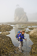 Liana Welty hikes through tide pools past a sea stack in fog at Norwegian Memorial, North Coast, Olympic National Park, Washington.