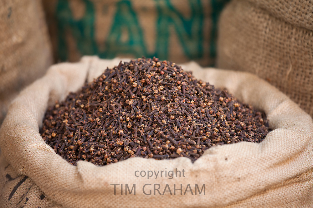 Sacks of dried cloves at Khari Baoli Spice and Dried Foods Market in Old Delhi, India