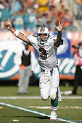Miami Dolphins 24-20 victory over the Minnesota Vikings on November 19, 2006 at Dolphins Stadium in Miami, Florida.