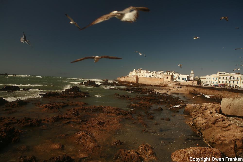 the oceanfront in Essouira, Morocco - Photograph by Owen Franken
