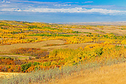 Autumn on the Canadian Prairie<br /> Baljennie<br /> Saskatchewan<br /> Canada