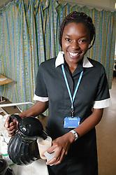 Ward waitress pouring out tea for patient,