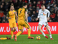 Football - 2017 / 2018 Premier League - Swansea City vs. Brighton & Hove Albion<br /> <br /> Olie Mcburnie of Swansea City attacks, at The Liberty Stadium.<br /> <br /> COLORSPORT/WINSTON BYNORTH