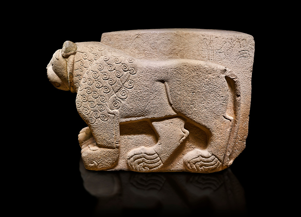 """Hittite relief sculpted stone panel. Lion. Aslantepe Gate Limestone, Aslantepe, Malatya, 1200-700 B.C. Anatolian Civilisations Museum, Ankara, Turkey.<br /> <br /> The lion on the left of the two lions at the gate of the palace. His head and his front part were processed as high embossing and his body as regular embossing. The signs behind the lion and over his tail read; """"Halposulupis, Mighty (?) King"""".<br /> <br /> Against a black background.<br /> <br /> If you prefer to buy from our ALAMY STOCK LIBRARY page at https://www.alamy.com/portfolio/paul-williams-funkystock/hittite-art-antiquities.html . Type - Aslantepe - in LOWER SEARCH WITHIN GALLERY box. Refine search by adding background colour, place, museum etc.<br /> <br /> Visit our HITTITE PHOTO COLLECTIONS for more photos to download or buy as wall art prints https://funkystock.photoshelter.com/gallery-collection/The-Hittites-Art-Artefacts-Antiquities-Historic-Sites-Pictures-Images-of/C0000NUBSMhSc3Oo"""