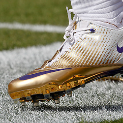 October 22, 2011; Baton Rouge, LA, USA;  A detailed view of the shoes worn by LSU Tigers defensive back Ronnie Vinson (28) prior to kickoff of a game against the Auburn Tigers at Tiger Stadium.  Mandatory Credit: Derick E. Hingle-US PRESSWIRE / © Derick E. Hingle 2011