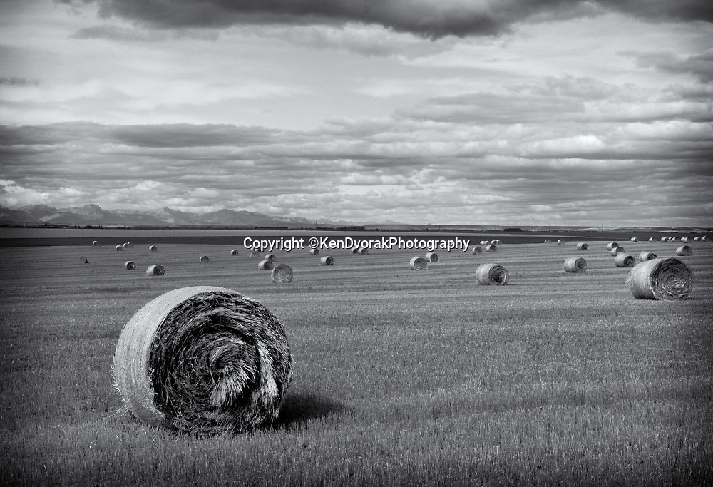 Big Bales & Big Sky #2<br /> Edited & converted to B&W 11/8/19
