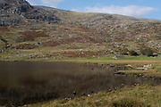 Landscape view looking towards the lower slopes of Pen yr Ole Wen beside Llyn Ogwen lake on 17th September 2020 in Pont Pen-y-benglog, Snowdonia, Wales, United Kingdom. Snowdonia is a mountainous region in northwestern Wales and a national park of 823 square miles in area. It was the first to be designated of the three national parks in Wales, in 1951.