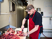 30 APRIL 2020 - STANHOPE, IOWA: BRANDON STRUNK trims beef at Stanhope Locker and Market, in Stanhope, Iowa. The family owned meat locker slaughters and butchers beef cattle, pigs, and sheep. The COVID-19 (SARS-CoV-2/Coronavirus) pandemic has spread among employees in the meat packing plants in the Iowa, Nebraska, South Dakota, and Minnesota, forcing many to close or curtail operations. This has resulted in farmers euthanizing thousands of pigs and beef cattle. Pork production has been slashed by about 40% because of the pandemic. Meat lockers and family owned butchering facilities have been swamped with farmers and ranchers trying to sell their livestock to them rather than the meat packing plants, but the meat lockers are backed up by the huge increase in supply. Many meat lockers are now full through the end of the year. Stanhope Locker and Market doesn't have any openings for slaughtering and butchering either cattle or pigs until mid-December 2020.         PHOTO BY JACK KURTZ