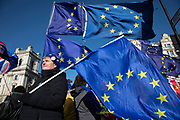 Anti Brexit protesters with European Union flags protest as Prime Ministers questions is due to start in Westminster outside Parliament on 29th January 2020 in London, England, United Kingdom. With only two days until the UK is due to leave the EU, these will be some of the last protests with the UK as a European nation.