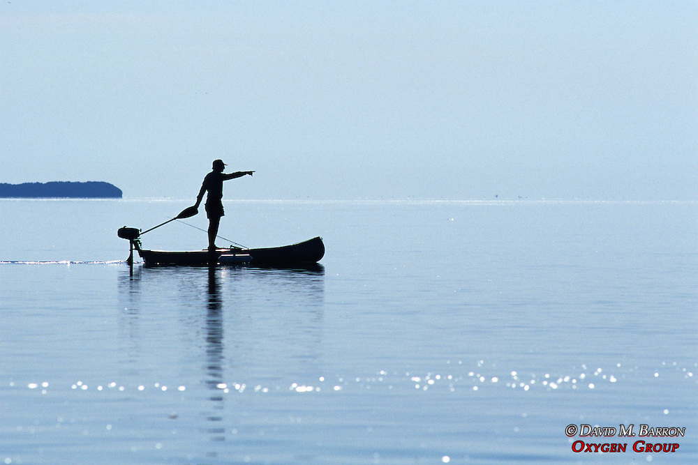 Man Standing In Motorized Canoe In The Everglades