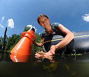 Sabine Hilt (Expertin für submerse Makrophyten) betrachtet Wasserpflanzen und Ufervegetation. In der Hand hält sie Froschbiss (Hydrocharis morsus-ranae), der in Brandenburg als gefährdet eingestuft ist. Der Trichter ist ein Aquascope, man kann mit ihm besser in das Wasser schauen.