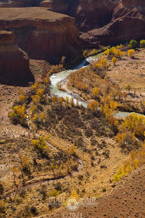 Fall colors along the San Rafael River
