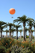 Orange County Great Park Palm Court