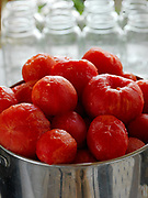 Fresh organic tomatoes pealed and ready for cooking and canning.