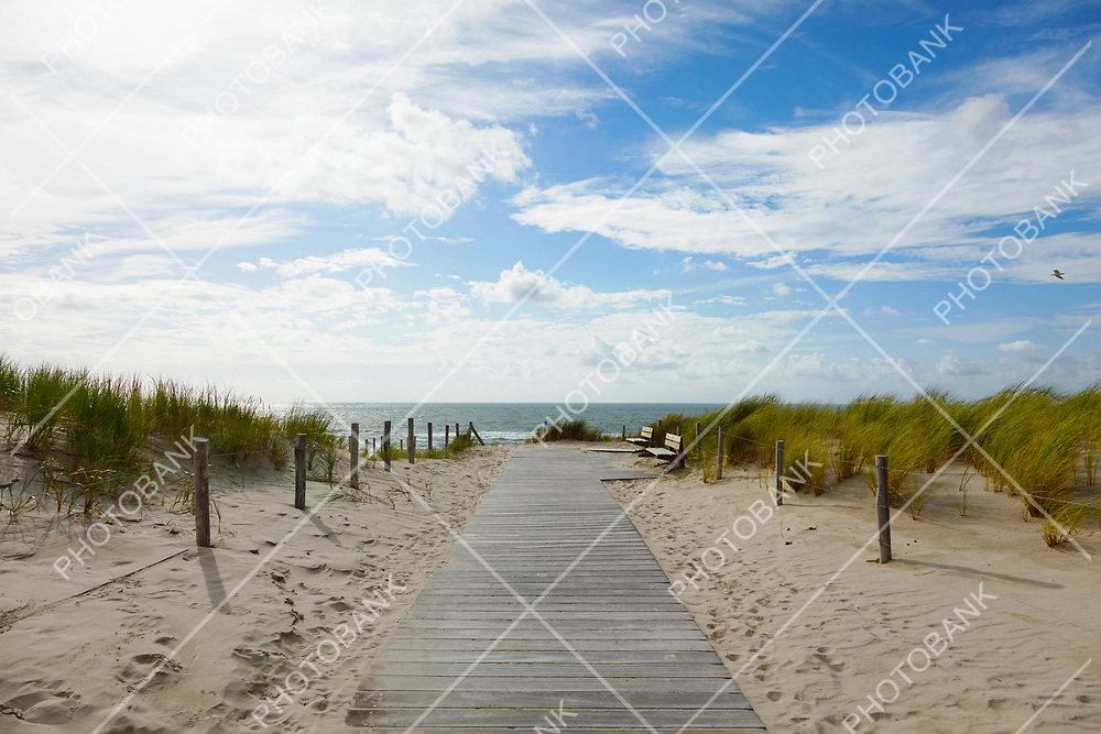 Sand driveway leading to the sea
