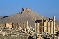Syrie - Palmyre - Colonnade et château arabe