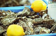 On Quai des Chartrons. A street market. Oysters. On Les Quais. Bordeaux city, Aquitaine, Gironde, France
