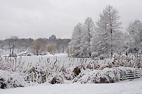 Snow storm at Harlem Meer in Central Park