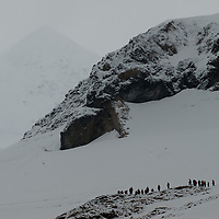 Tourists from a cruise ship stand atop a hill above Neko Harbor, Antarctica.