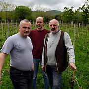 At the Prince Makashvili vineyard.