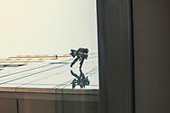 Window washer. Seattle, Washington. ©CiroCoelho.com All Rights Reserved.