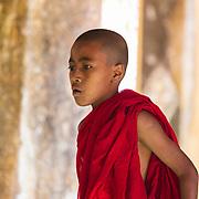 Young monk in Bagan, Myanmar