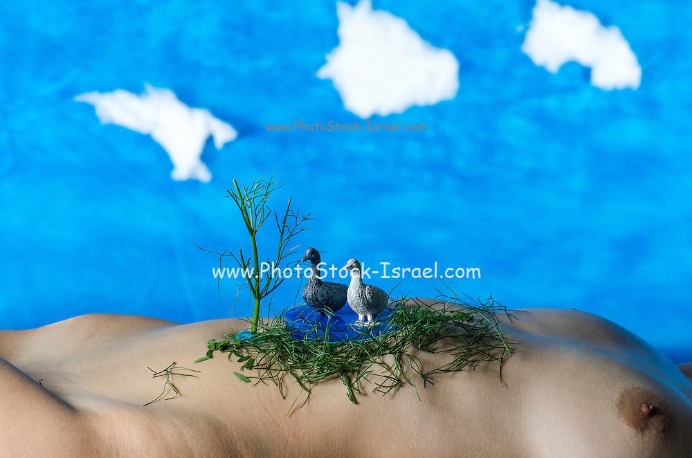 livestock farming Fantasy miniature toy geese on a nude woman's torso landscape