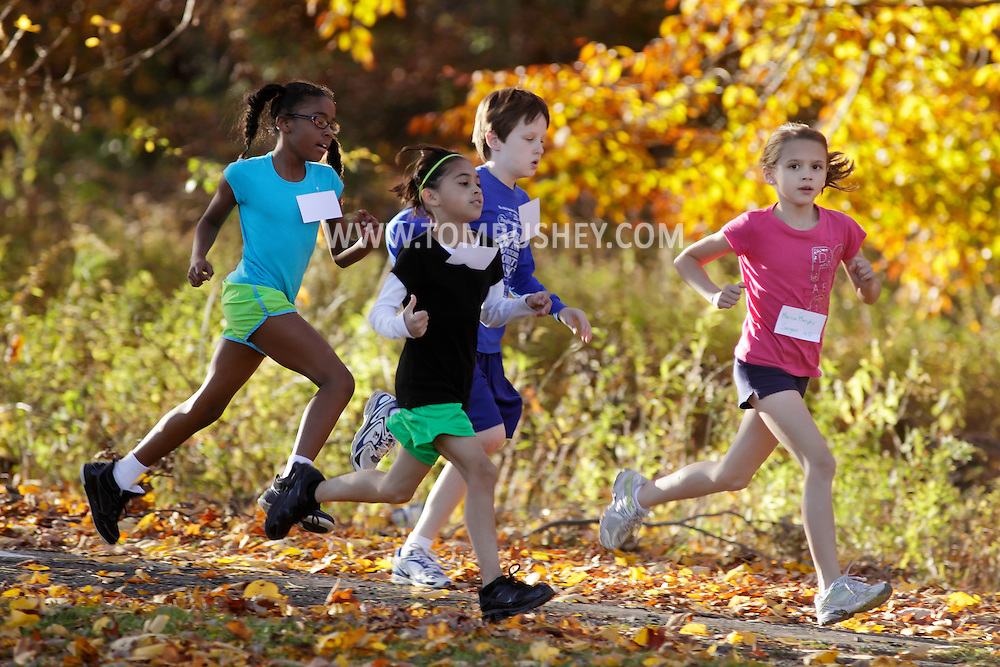 Beacon, New York - Middle school children compete in a cross country race on Oct. 28, 2010.