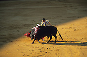 """Matador and bull in La Real Maestranza..Bullfighting in Sevilla's famous bullring """"La Real Maestranza"""" is a significant part of the Feria de Abril..The Feria de abril de Sevilla, """"Seville April Fair"""" dates back to 1847. During the 1920s, the feria reached its peak and became the spectacle that it is today. It is held in the Andalusian capital of Seville in Spain. The fair generally begins two weeks after the Semana Santa, Easter Holy Week. The fair officially begins at midnight on Monday, and runs six days, ending on the following Sunday. Each day the fiesta begins with the parade of carriages and riders, at midday, carrying Seville's citizens to the bullring, La Real Maestranza. Seville. Andalusia. Spain...Blood sport ending in the killing of a bull in front of thousands of spectators. An entertainment and tradition derived from the ancient gladiatorial spectacles of Roman times. This activity is loved and defended by 'affecionados' who see the artistry and traditions whilst it is detested by animal rights activists, environmentalist and ecologists for its cruelty to animals"""
