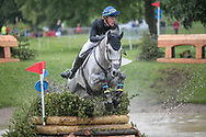 PARAMOUNT IMPORTANCE ridden by Ludwig Svennerstal (SWE) taking part in the Equitrek CCI*** cross country on day three of the Bramham International Horse Trials 2017 at Bramham Park, Bramham, United Kingdom on 11 June 2017. Photo by Mark P Doherty.