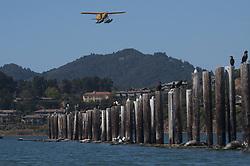 Sea Plane, Sausalito, California, US